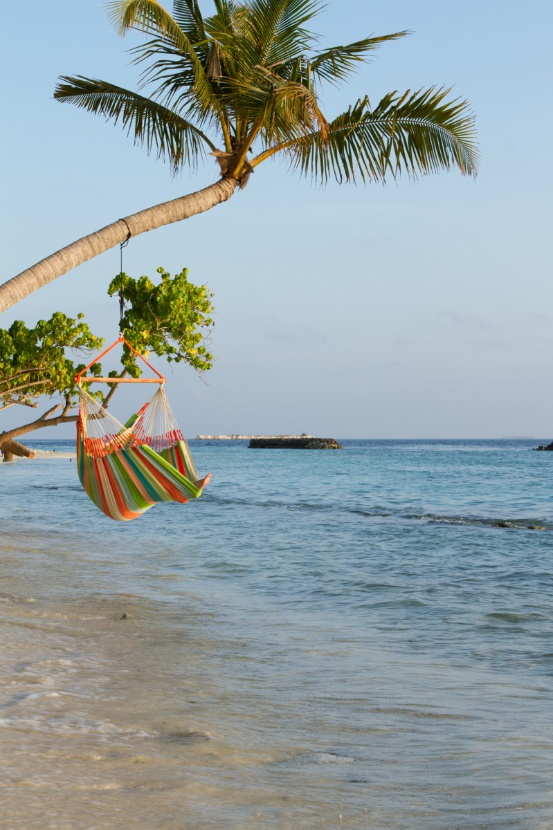 Lounger Hammock Chair Coral Product Photo