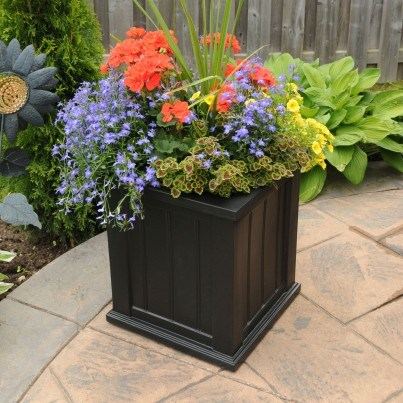 Mayne Cape Cod Window Box and Planter Collection  by Mayne