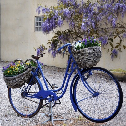 West of the Wind Outdoor Canvas Wall Art - Blue Bike  by West of the Wind