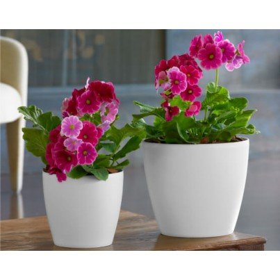 "Eva Planter - 18""  by Frontera Furniture Company"