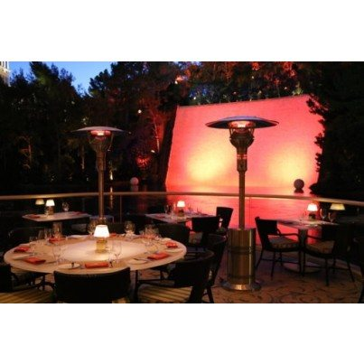 Evenglo Luxury LPG Portable Patio Heater - 46,000BTU  by IR Energy