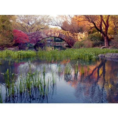 West of the Wind Outdoor Canvas Wall Art - Reflections  by West of the Wind