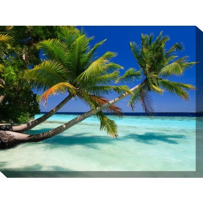 West of the Wind Outdoor Canvas Wall Art - Palms Duo  by West of the Wind