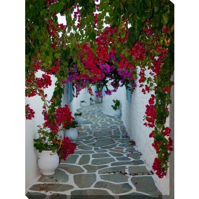 West of the Wind Outdoor Canvas Wall Art - Bougainvillea Path  by West of the Wind