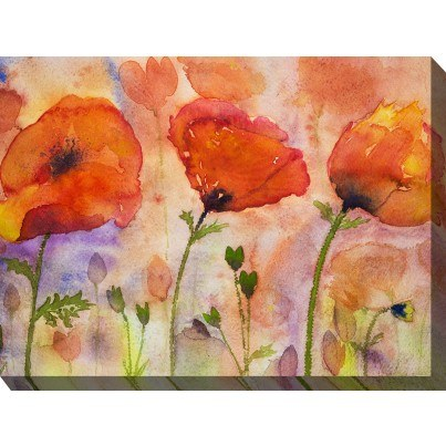 West of the Wind Outdoor Canvas Wall Art - 3 Poppies  by West of the Wind