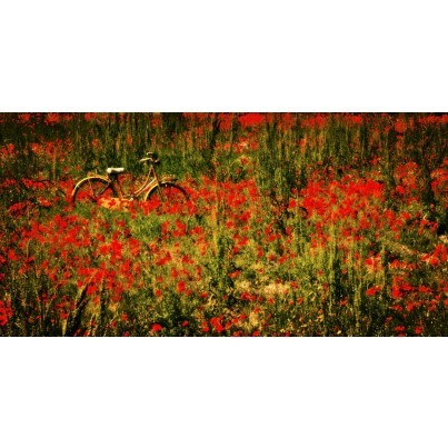 West of the Wind Outdoor Canvas Wall Art - Wet Paint  by West of the Wind