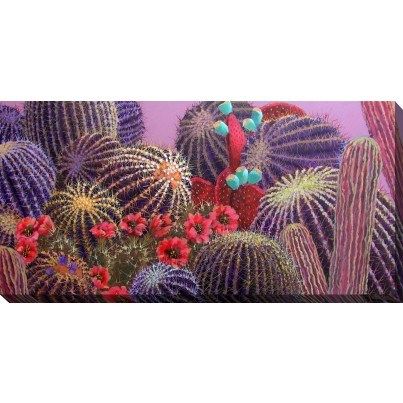 West of the Wind Outdoor Canvas Wall Art - Evening Cactus  by West of the Wind