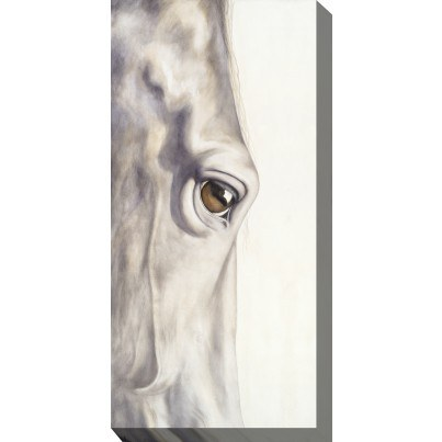 West of the Wind Outdoor Canvas Wall Art - Pale Long Eye  by West of the Wind