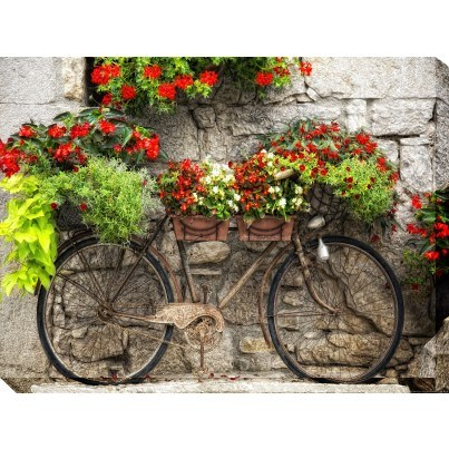 West of the Wind Outdoor Canvas Wall Art - Rusty Bicyclette  by West of the Wind