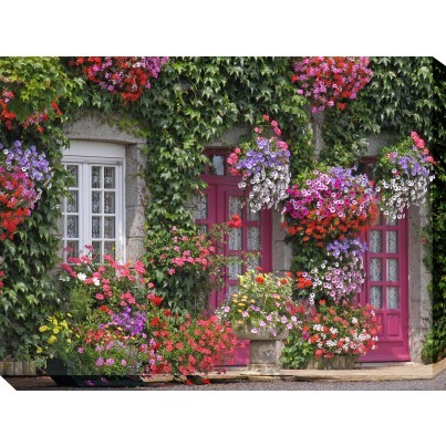 West of the Wind Outdoor Canvas Wall Art - Brittany Beauty  by West of the Wind