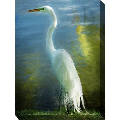 West of the Wind Outdoor Canvas Wall Art - Poised Patience  by West of the Wind