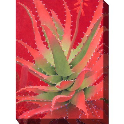 West of the Wind Outdoor Canvas Wall Art - Red Agave  by West of the Wind