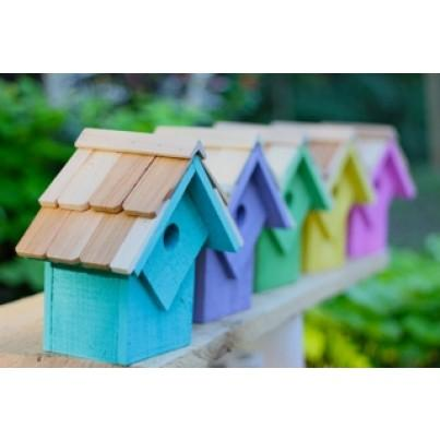 Heartwood Summer Home Birdhouse Set - Pastel Colors  by Heartwood