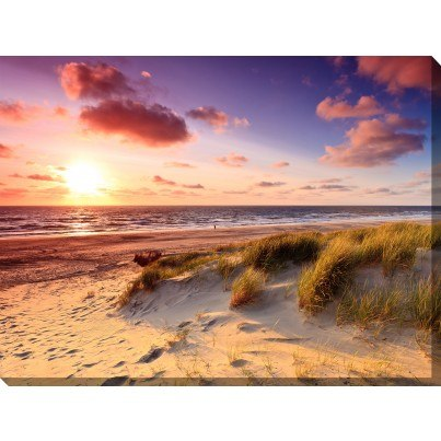 West of the Wind Outdoor Canvas Wall Art - Windswept