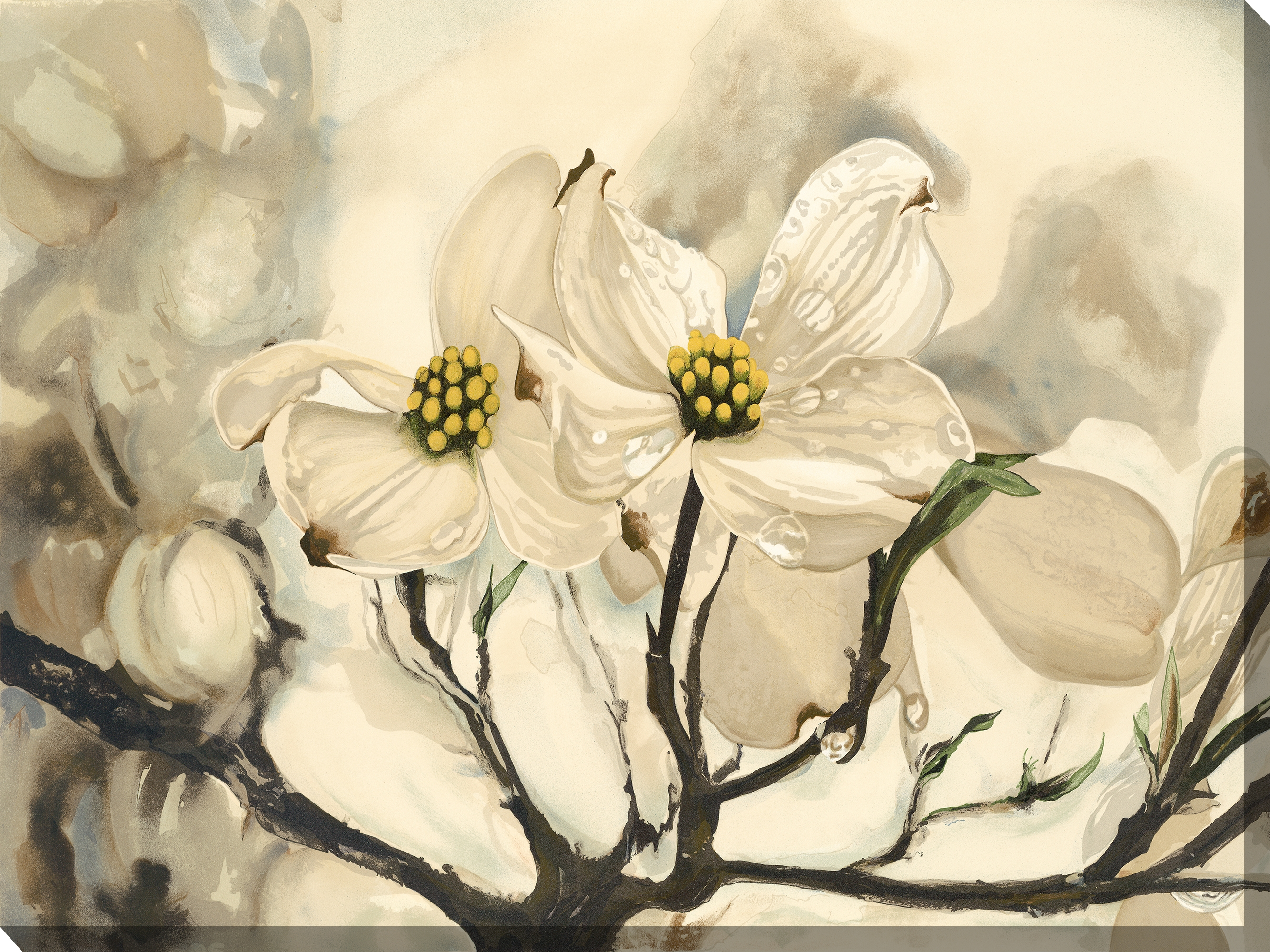 Canvas Wall Art Dogwood Color Product Photo