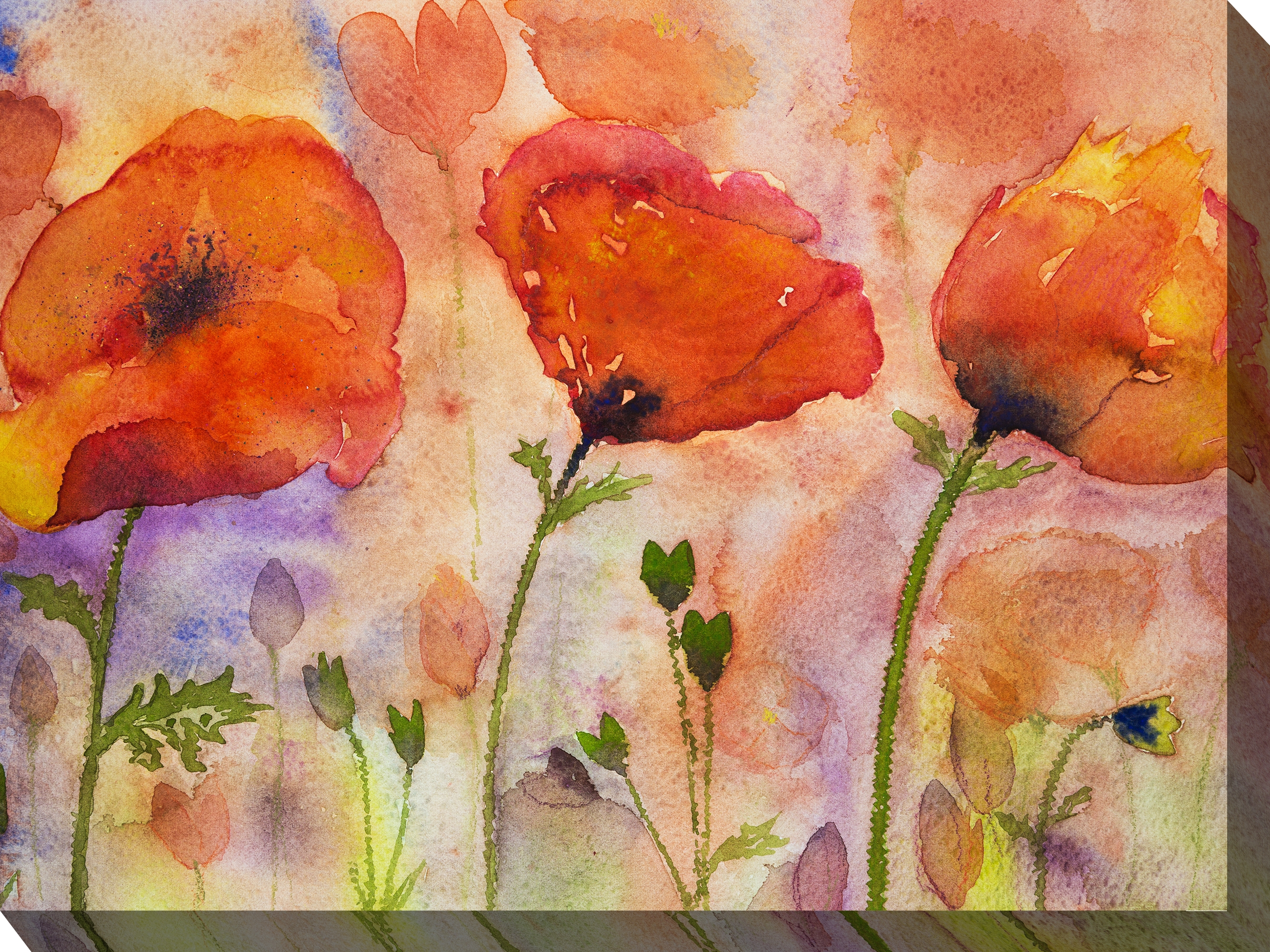 Canvas Wall Art Poppies Product Photo