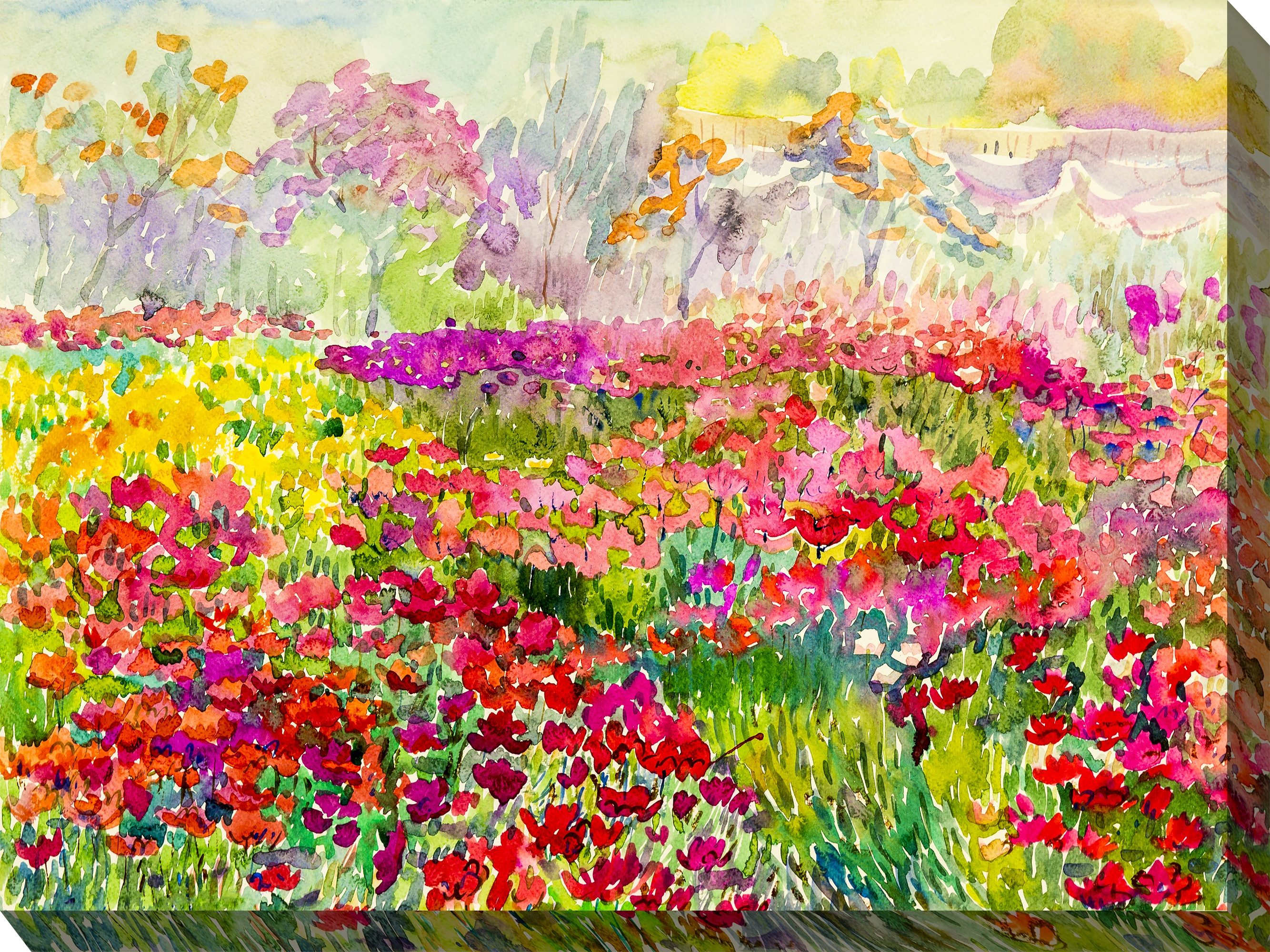 Canvas Wall Art Field Of Colors Product Photo