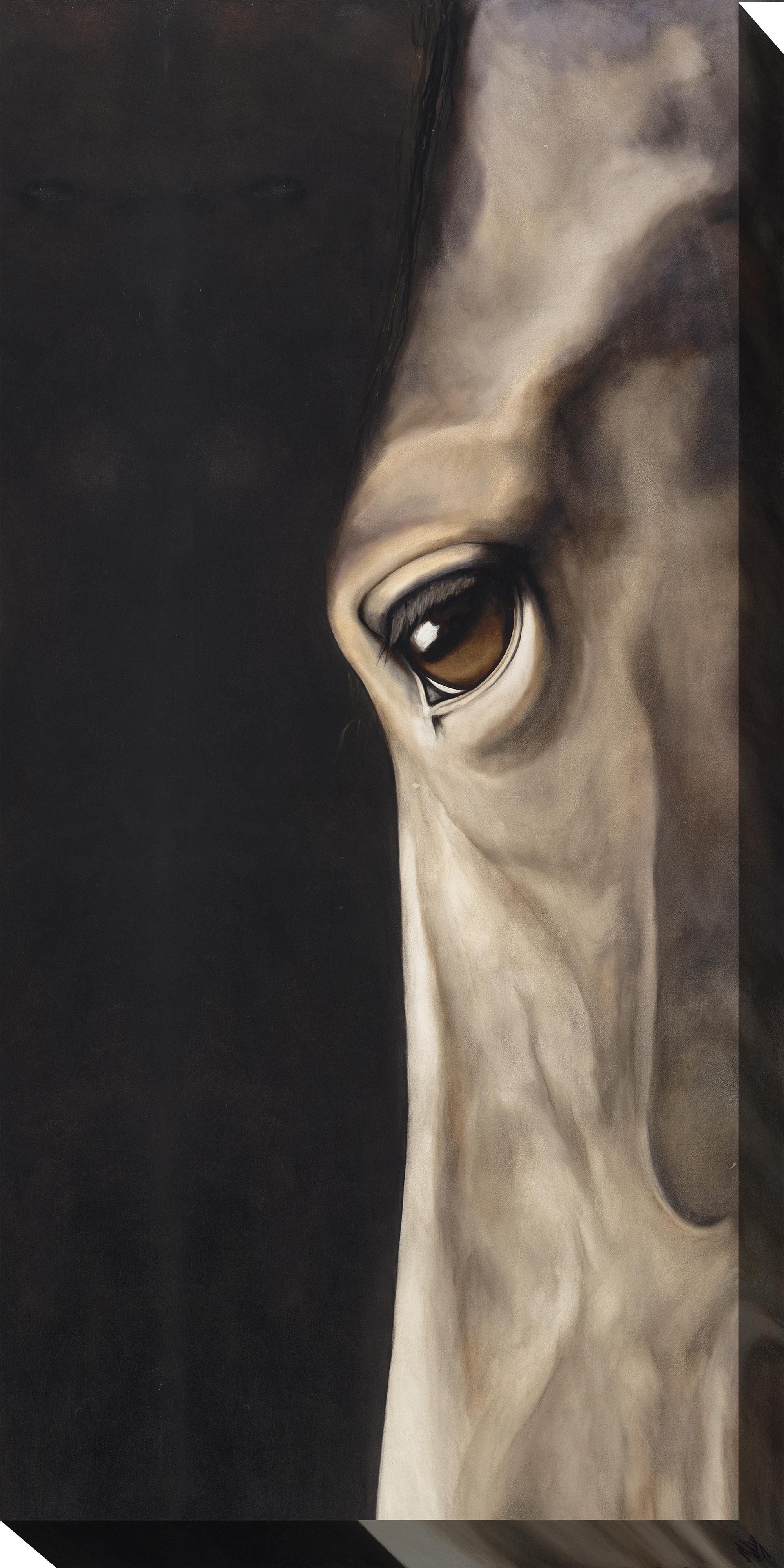 Canvas Wall Art Dark Eye Product Photo