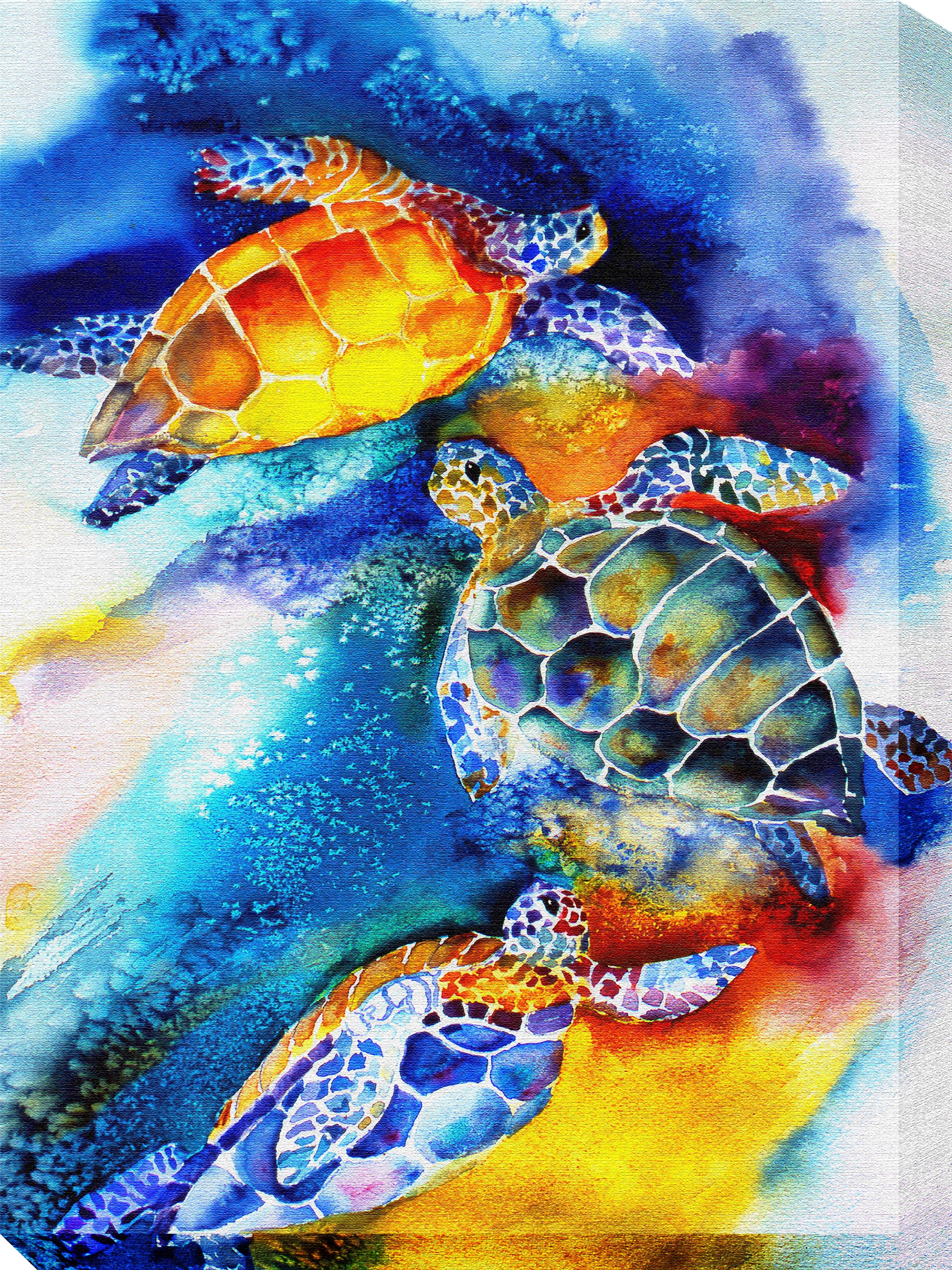 Canvas Wall Art Turtle Play Product Photo