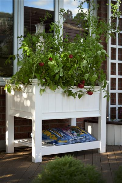 Raised Planter Box Product Photo