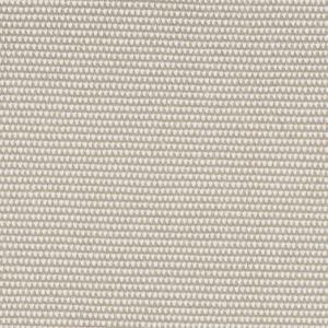 A Canvas 5453