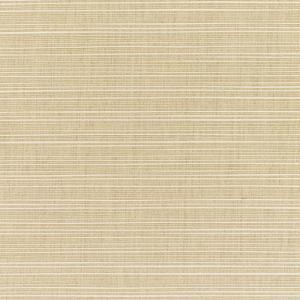 C Dupione Sand 8011 +$493.50