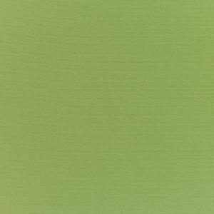 C Canvas Palm 5421 +$493.50