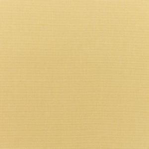 B Canvas Wheat 5414 +$460.60