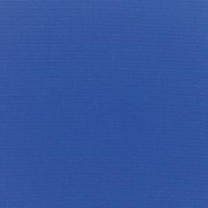 B Canvas True Blue 5499 +$460.60