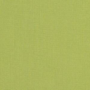B Spectrum Kiwi 48023 +$460.60