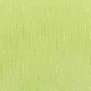 C Canvas Parrot 5405 +$493.50