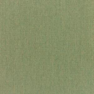 B Canvas Fern 5487 +$460.60
