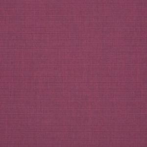 C Canvas Iris 57002 +$493.50
