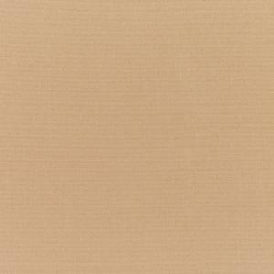 B Canvas Camel 5468 +$460.60