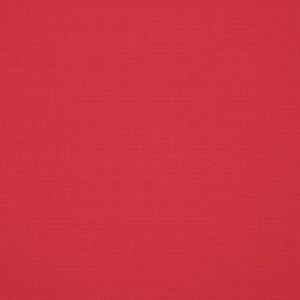 C Canvas Blush 57000 +$493.50