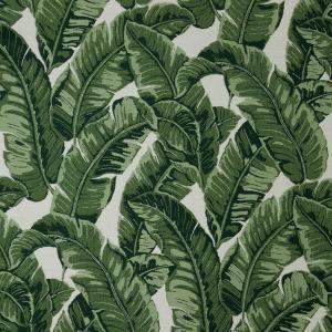 E Tropics Jungle 145214-0000 +$575.75